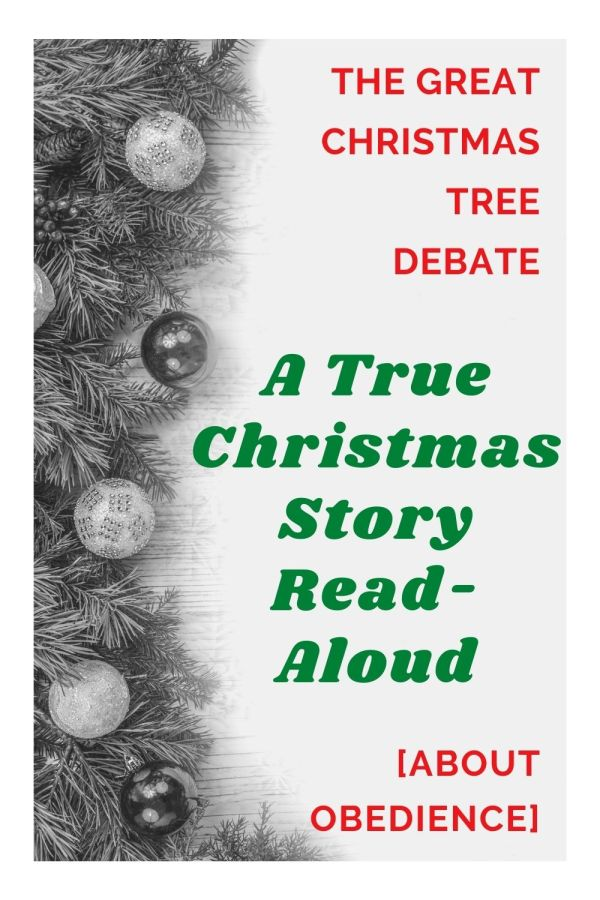 a true christmas read aloud story about obedience family